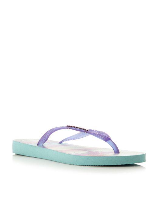 Havaianas | Purple 4132614 Fluoro Jelly Tropical Flip Flop | Lyst