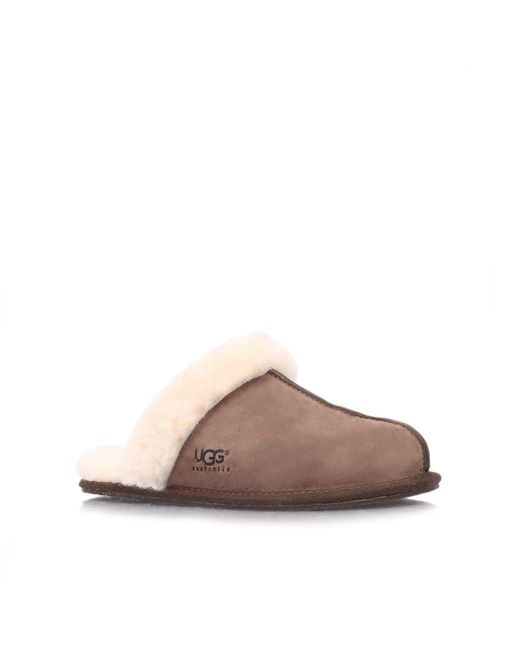 Ugg | Brown Scuffette Ii Slippers | Lyst