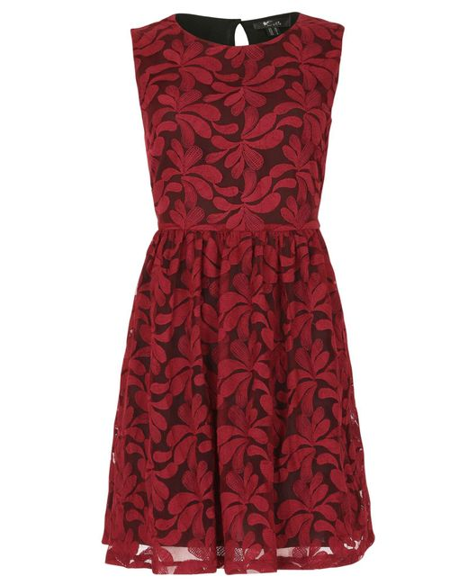 Cutie   Embroidered Floral Net Dress   Lyst