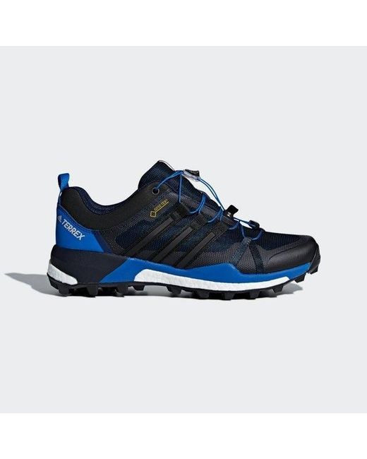 huge discount ade89 66c5b Adidas - Blue Terrex Skychaser Gtx Shoes for Men - Lyst ...