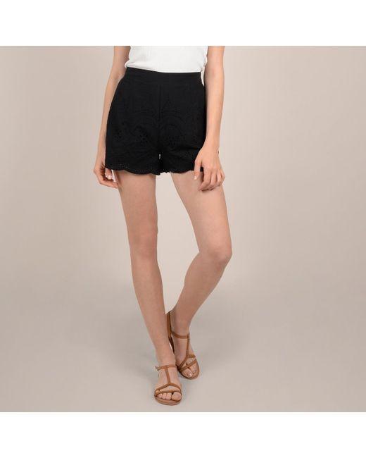 Molly Bracken - Black Short bordado con cintura elástica - Lyst