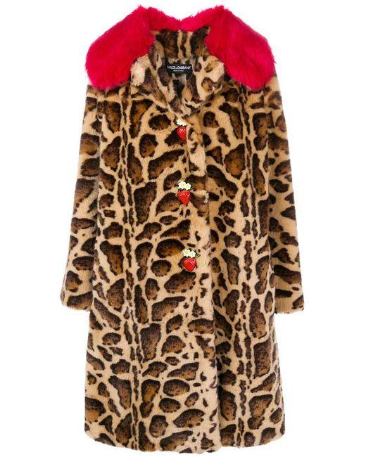 Dolce & Gabbana - Brown Contrast-collar Leopard-print Coat - Lyst
