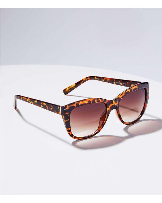 LOFT - Brown Tortoiseshell Print Cateye Sunglasses - Lyst