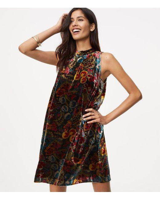 Loft Floral Velvet Swing Dress In Black Save 2 Lyst