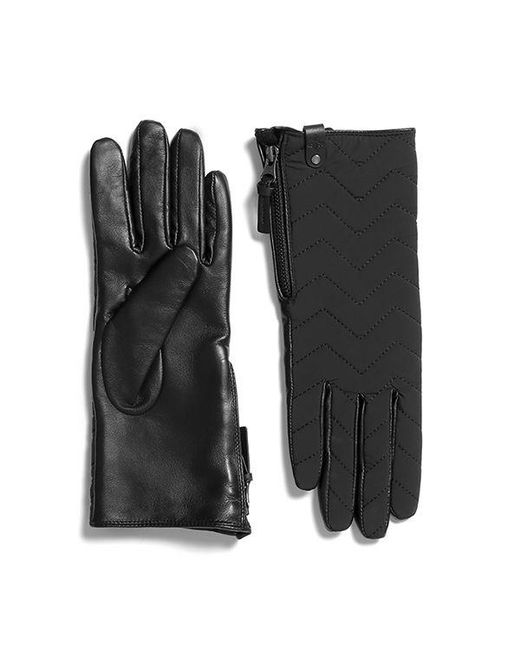 Mackage - Black Piner Quilted Leather Gloves For Women - Lyst