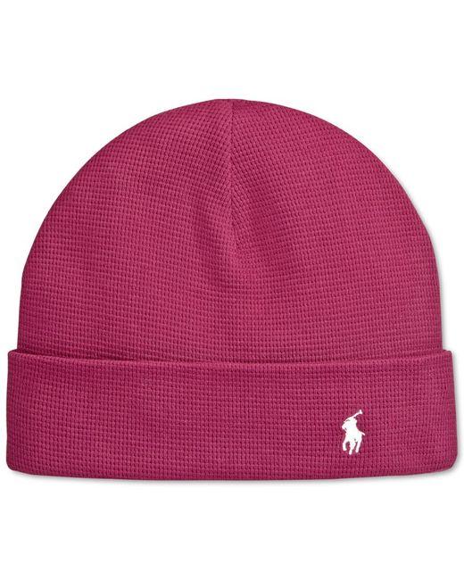 Polo Ralph Lauren | Purple Thermal Cuffed Beanie for Men | Lyst
