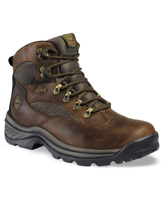 Timberland | Brown Men's Waterproof Chocorua Trail Gore-tex Hiker Boots for Men | Lyst