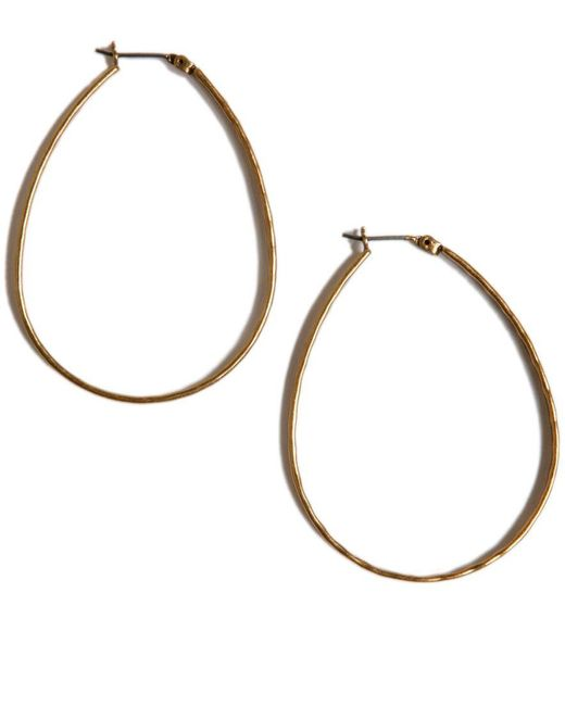 Lucky Brand | Metallic Earrings, Medium Oblong Gold-tone Hoop | Lyst
