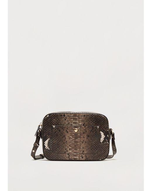 Violeta by Mango | Brown Handbag Mch | Lyst