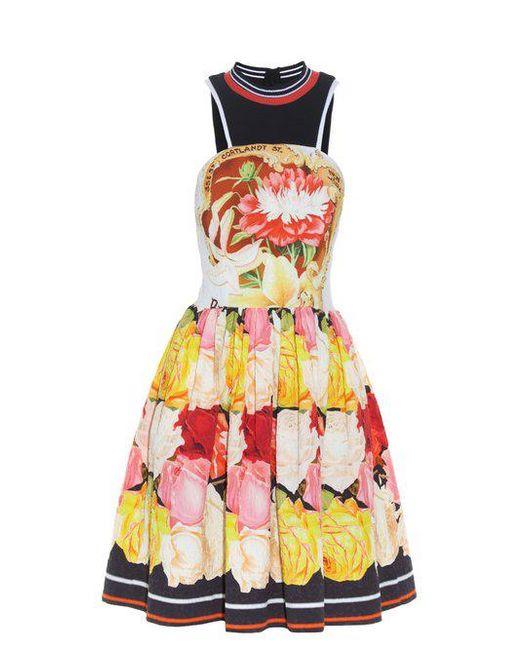 Densis Rosa Alba-print mini dress Mary Katrantzou Cheap Low Price Exclusive Pick A Best Genuine FUV2j9YLES