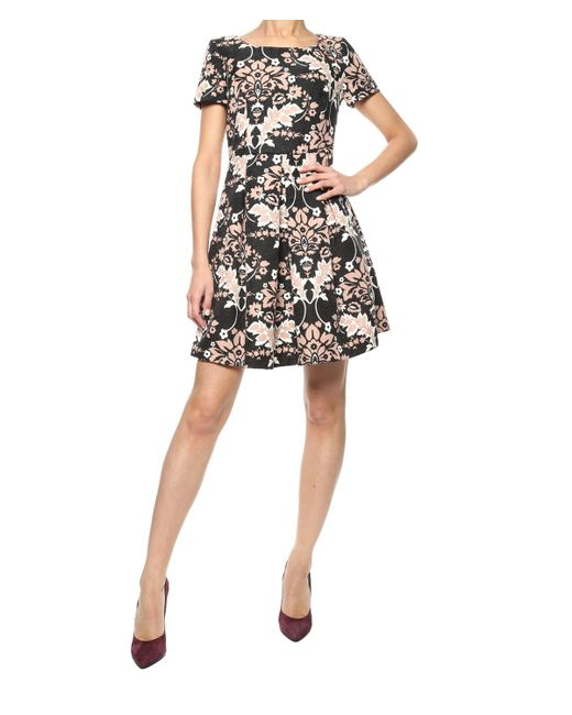 Liu jo Printed Dress in Black (multi)