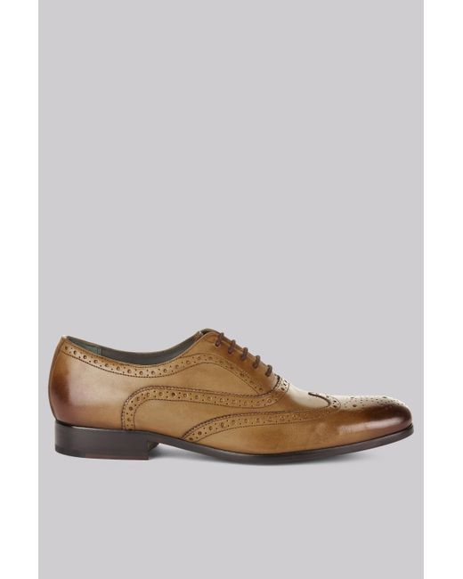 Ted Baker | Brown Tan Terak Brogue Shoes for Men | Lyst