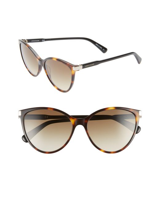 ff97bd3f55 Lyst - Longchamp Le Pliage 56mm Cat Eye Sunglasses - Havana  Black ...