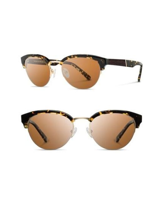 Shwood | 'hayden' 53mm Acetate & Wood Sunglasses - Dark Speckle/ Gold/ Brown | Lyst