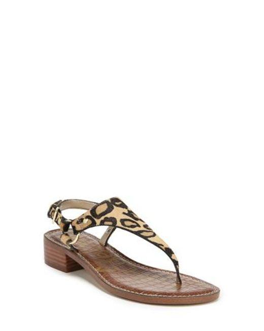 Sam Edelman Women's Jude Leopard Print Calf Hair Thong Sandals NXQ6k