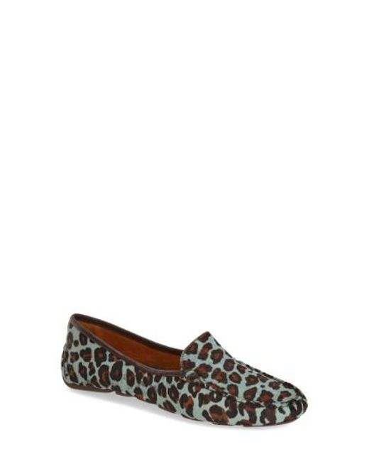 Patricia Green | Blue Jillian Animal-Print Loafers | Lyst