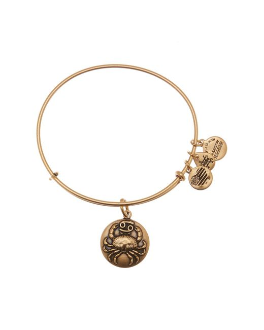 ALEX AND ANI - Metallic Cancer Expandable Bangle - Lyst