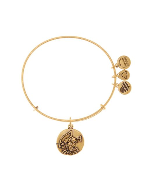 ALEX AND ANI | Metallic Hawthorn Detail Pendant Expandable Wire Bangle | Lyst