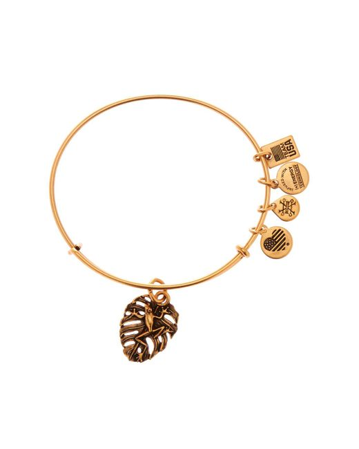 ALEX AND ANI - Metallic Frog Charm Expandable Wire Bangle - Lyst