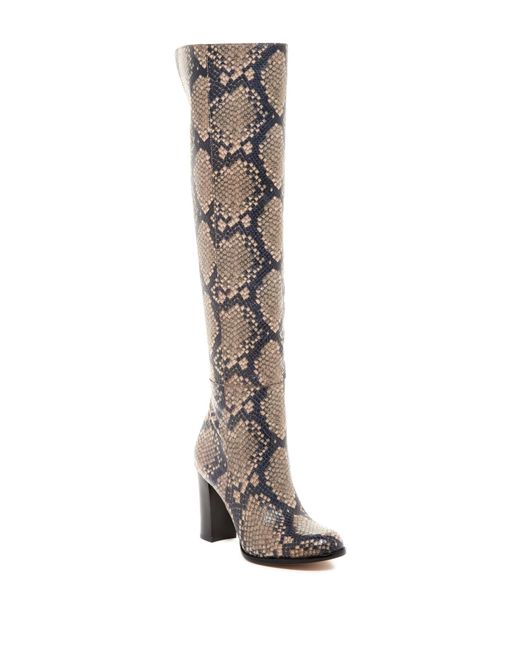 Sam Edelman Rylan Snake Print Tall Boot In Natural