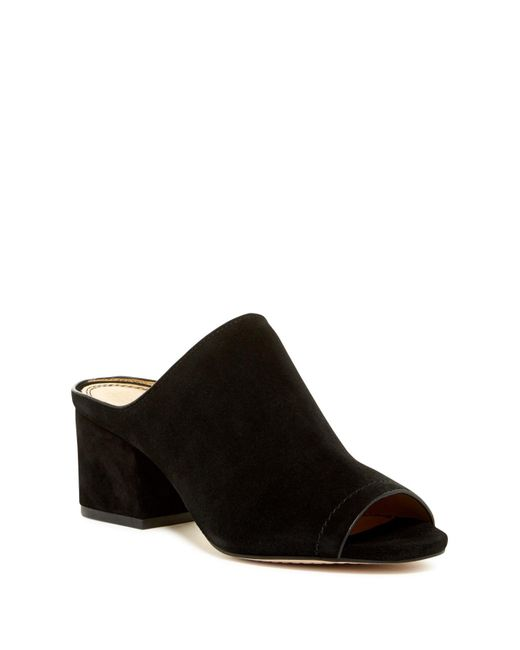 Splendid | Black Dylan Block Heel Mule | Lyst