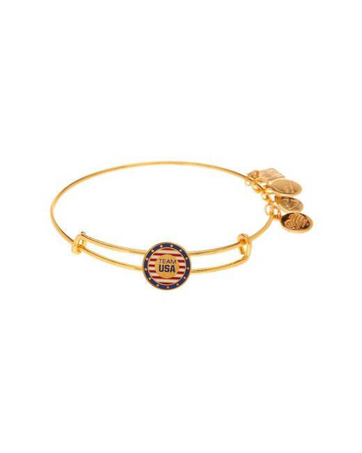 ALEX AND ANI - Metallic Team Usa Slider Charm Expandable Wire Bangle - Lyst