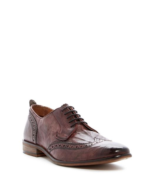 Steve Madden | Brown Analog Wingtip Oxford for Men | Lyst