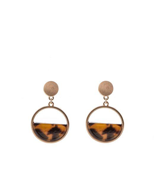Oasis - Brown Resin Circle Earrings - Lyst