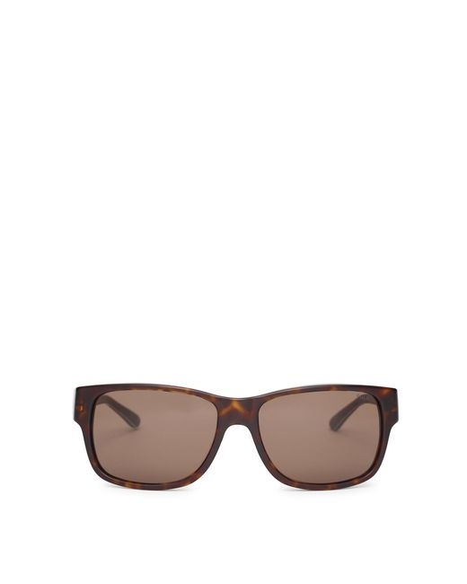 Polo Ralph Lauren | Brown Rugby Sunglasses for Men | Lyst