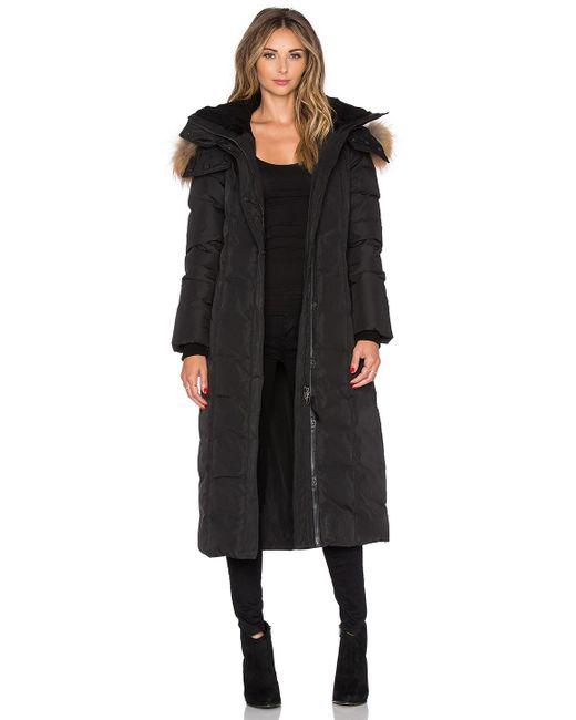Mackage | Black Jada Jacket With Asiatic Raccoon And Sheepskin | Lyst