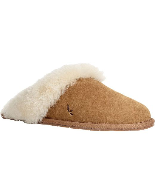 520235cc371 Women's Natural Milo Scuff Slipper