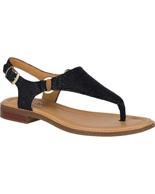 Abby Sparkle Sandals D4C3a05