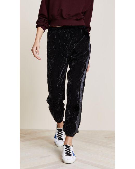 Splendid   Black Crushed Velvet Pants   Lyst