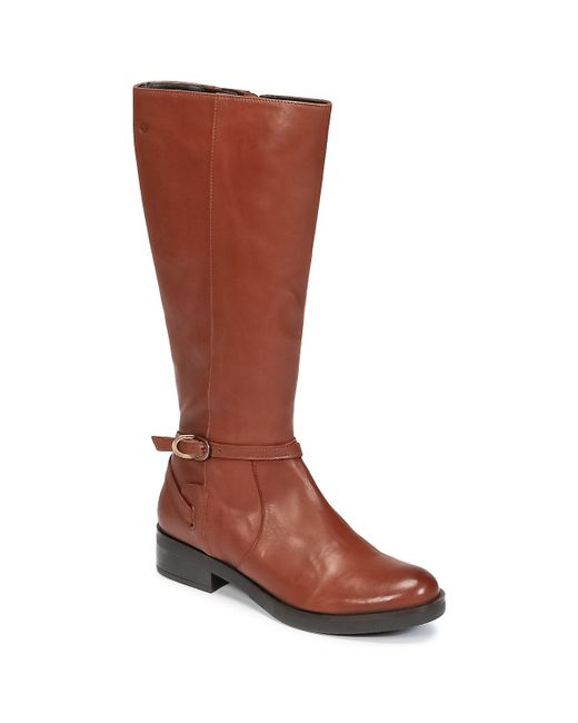 Betty London - Hovani Women's High Boots In Brown - Lyst