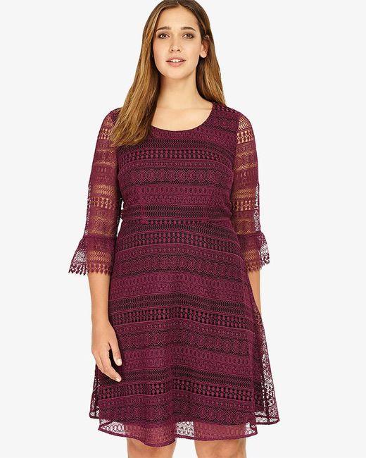 Studio 8 - Purple Demelza Lace Dress - Lyst