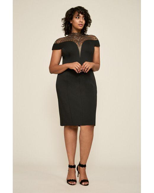 d6ea05e3520 Tadashi Shoji - Black Asher Neoprene Dress - Plus Size - Lyst ...