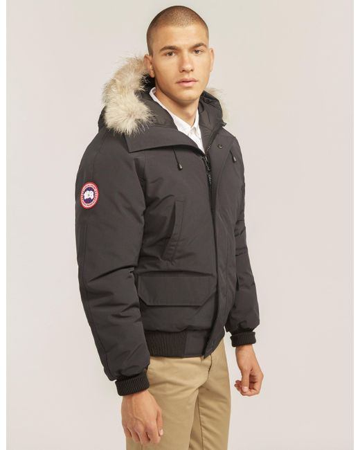 1613f44d318 ... buy canada goose mens chilliwack padded bomber jacket navy blue for men  lyst 39a73 16511