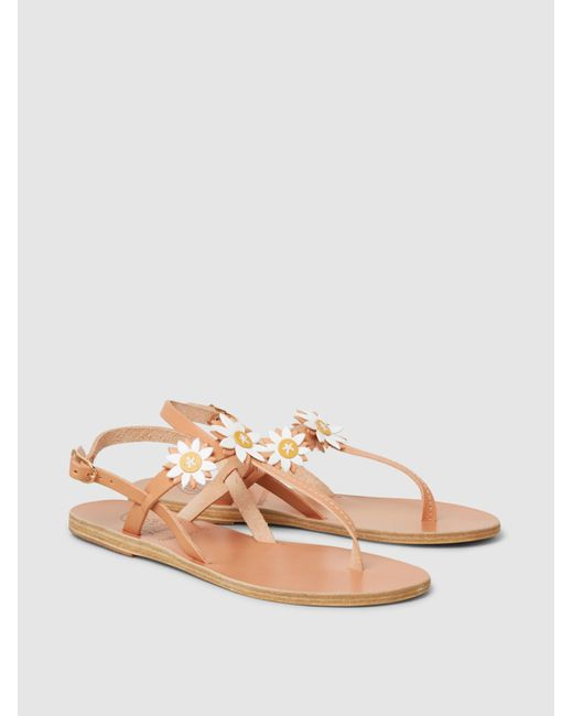 Sylvie Vachetta Leather Sandals Ancient Greek Sandals Xt91kx3