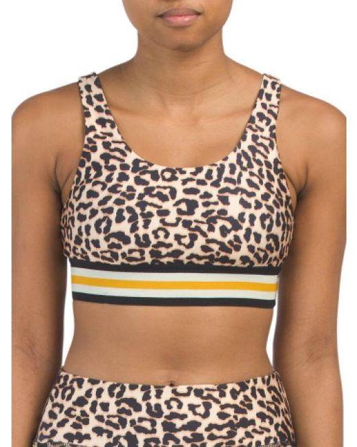 559704ddb697a Tj Maxx - Multicolor Cheetah Print Bra With Cups - Lyst