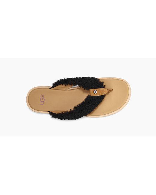 81d31a42c13 Lyst - UGG Women's Alicia Flip Flop in Black