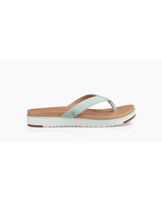Ugg - Blue Women's Share This Product Lorrie Flip Flop - Lyst