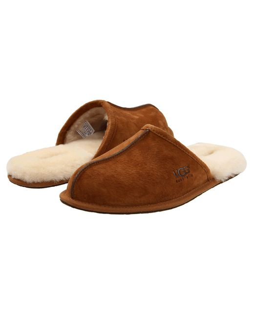 Ugg Brown Scuff for men