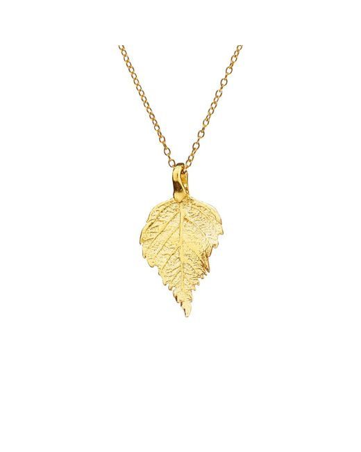 Chupi - Metallic The Sweetest Thing Tiny Raspberry Leaf Necklace Gold - Lyst