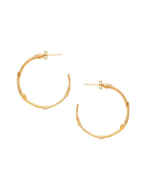 Ottoman Hands - Metallic Little Twig Gold Hoop Earrings - Lyst