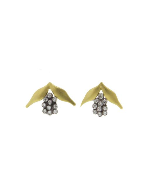Cathy Waterman - Multicolor Hyacinth Stud Earrings - Lyst