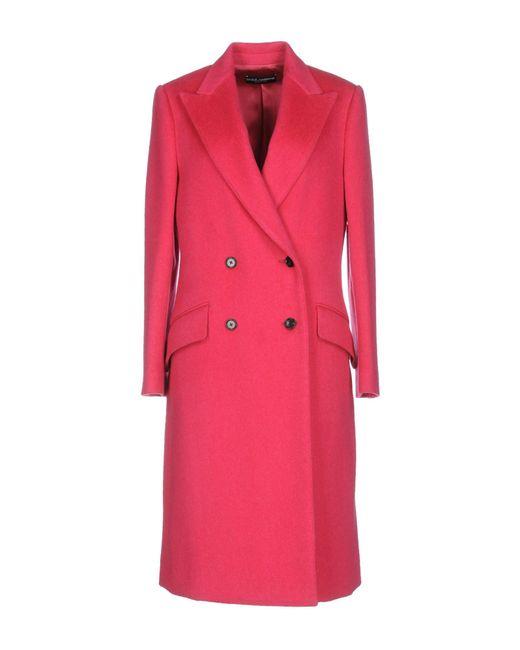 Dolce & Gabbana - Pink Coat - Lyst