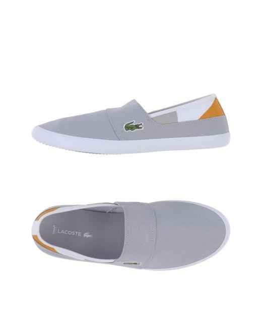 b4b69e2510f29 Lacoste - Gray Low-tops   Sneakers for Men - Lyst