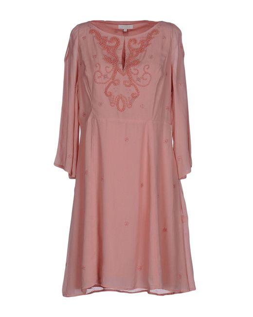 INTROPIA - Pink Short Dress - Lyst