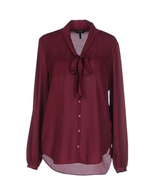 Armani Jeans - Purple Shirt - Lyst