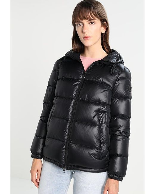Peuterey   Black Down Jacket   Lyst
